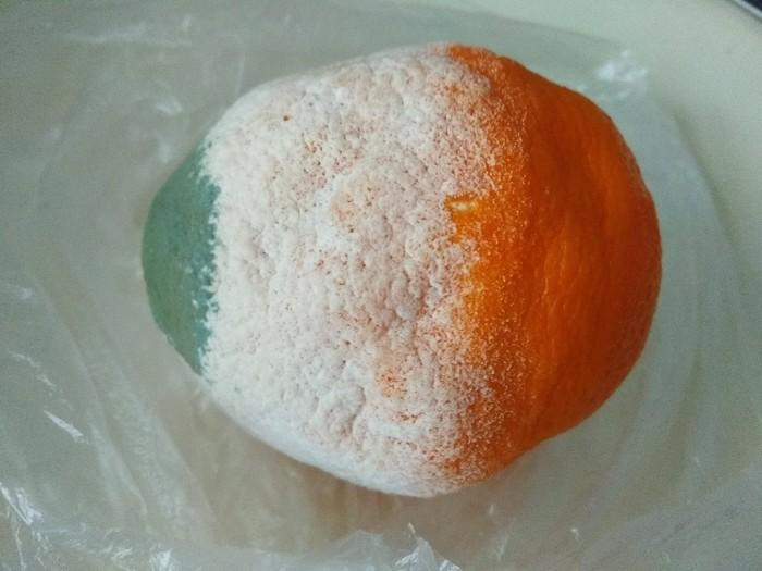Мой апельсин решил стать флагом Ирландии