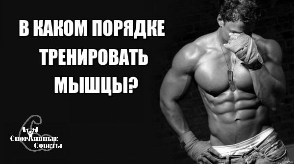 В каком порядке тренировать мышцы? Спорт, Тренер, Спортивные советы, Качалка, Исследование, ЗОЖ, Тренировка, Мышцы, Длиннопост