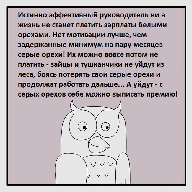 Серые орехи Фанфики об эффективной сове, Юмор, Комиксы