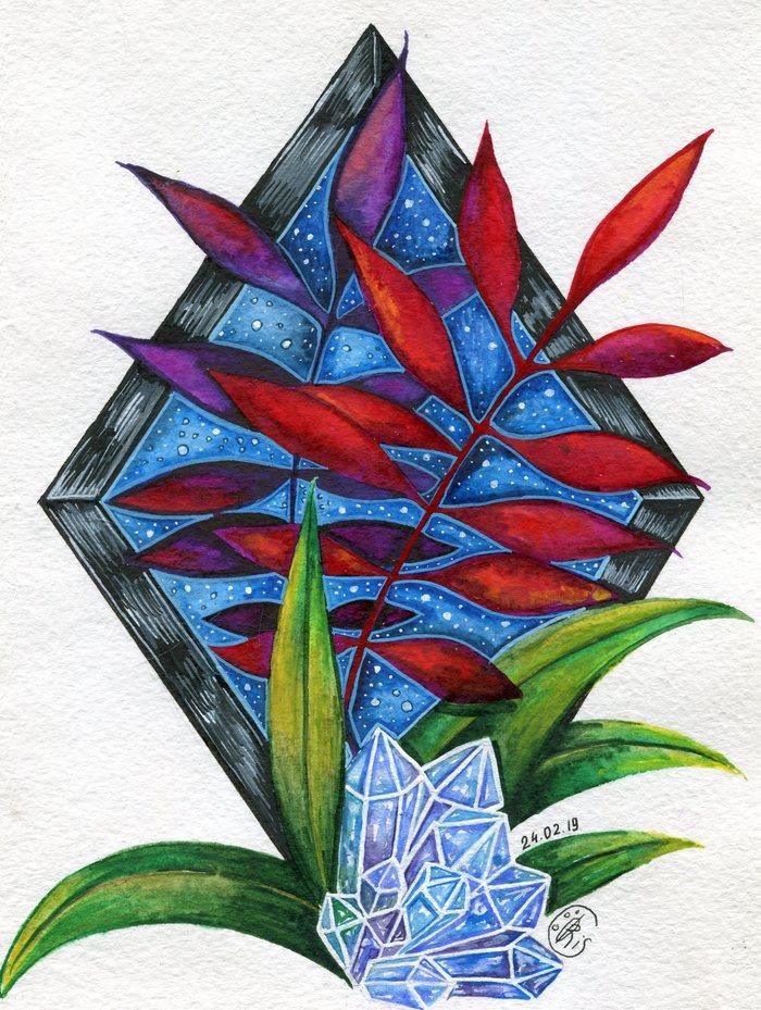 Травы и кристаллы