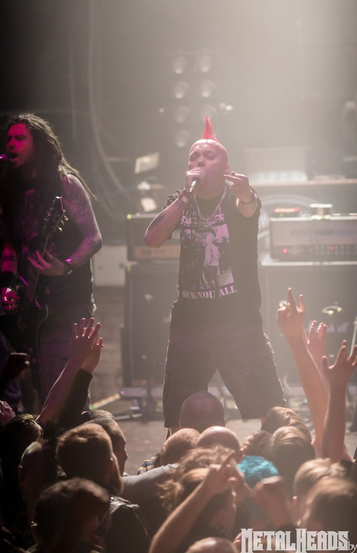 Punk's not dead! Hardcore punk, Музыка, Концерт, Минск, Панк, The Exploited, Олдфаги, Безумие, Длиннопост