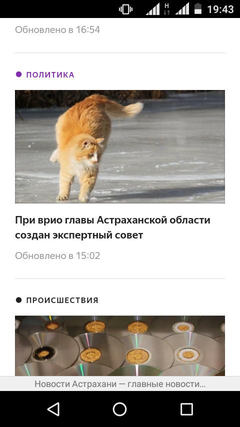А причём тут кот? Скриншот, Кот, Домашние животные