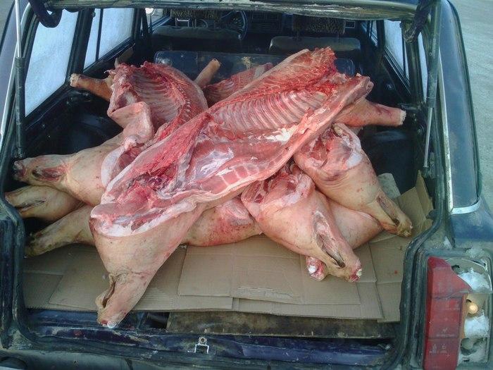 Среда обитания мясника. Устройство и оборудование мясного цеха. Часть первая. Мясо, Мясник, Говядина, Профессия, Длиннопост