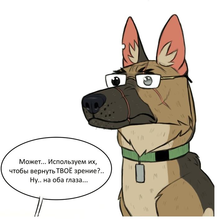 Пикси и очки Брут и Пикси, Комиксы, Друзья, Кот, Собака, Pet Foolery, Длиннопост