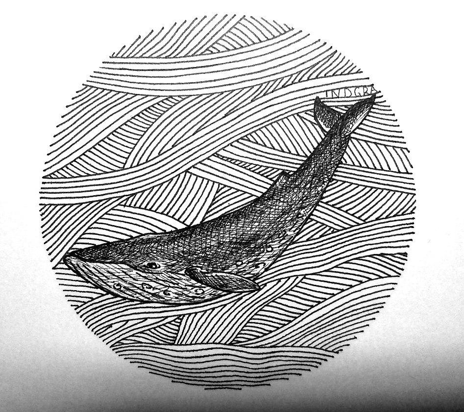 картинки моря рисунки