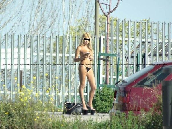 pridorozhnie-prostitutki-devushki-video-seks-kucha-devok-ebut-parnya