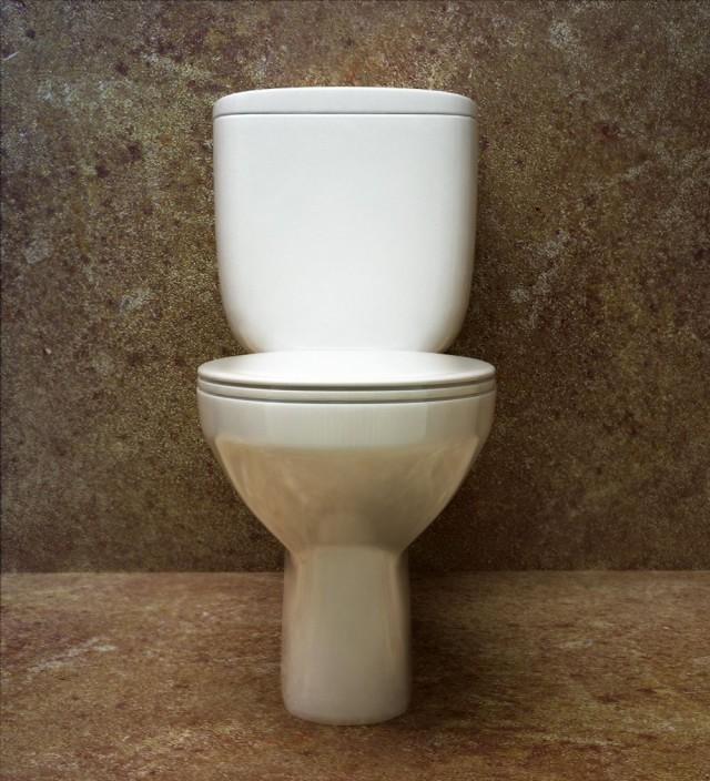 Общий женский туалет в деревне, порно русских девушек с членом