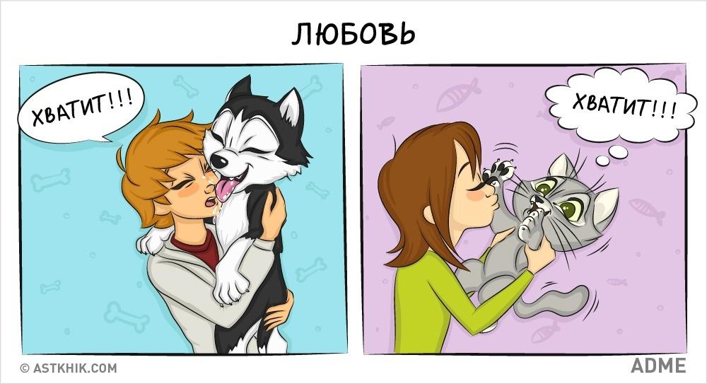 Комикс кот и собака
