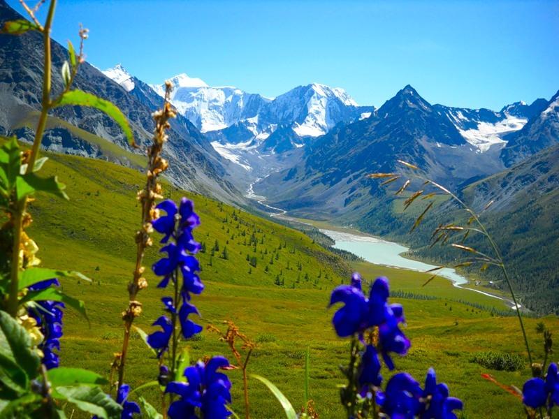 красоты горного алтая фото