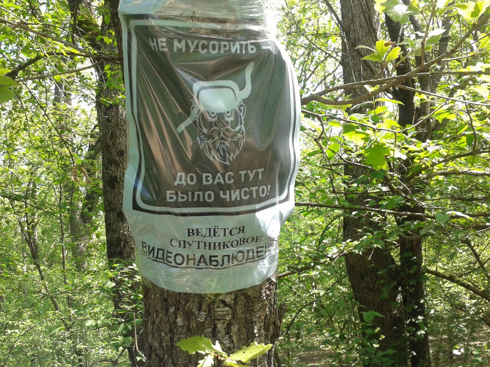 Фото секса в лес фото 99-674