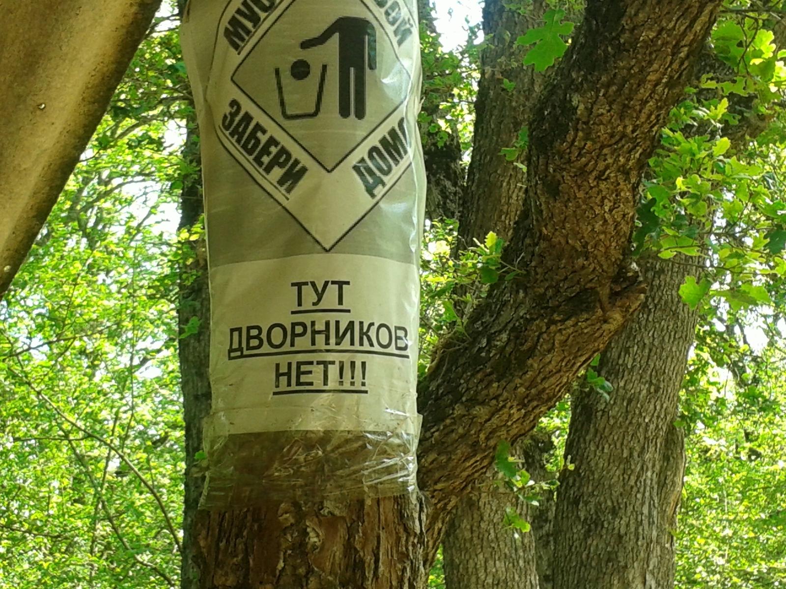 Фото секса в лес фото 99-739
