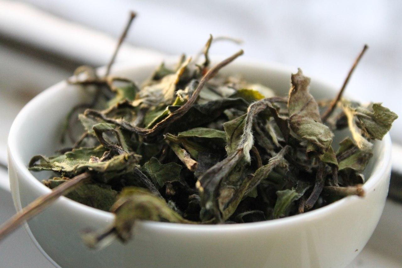 белый чай качество
