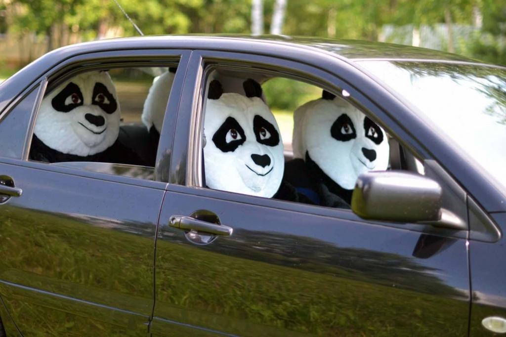 Популярные эксекссуары для машин