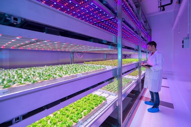 Картинки по запросу Будущее еды: 14 новых технологий