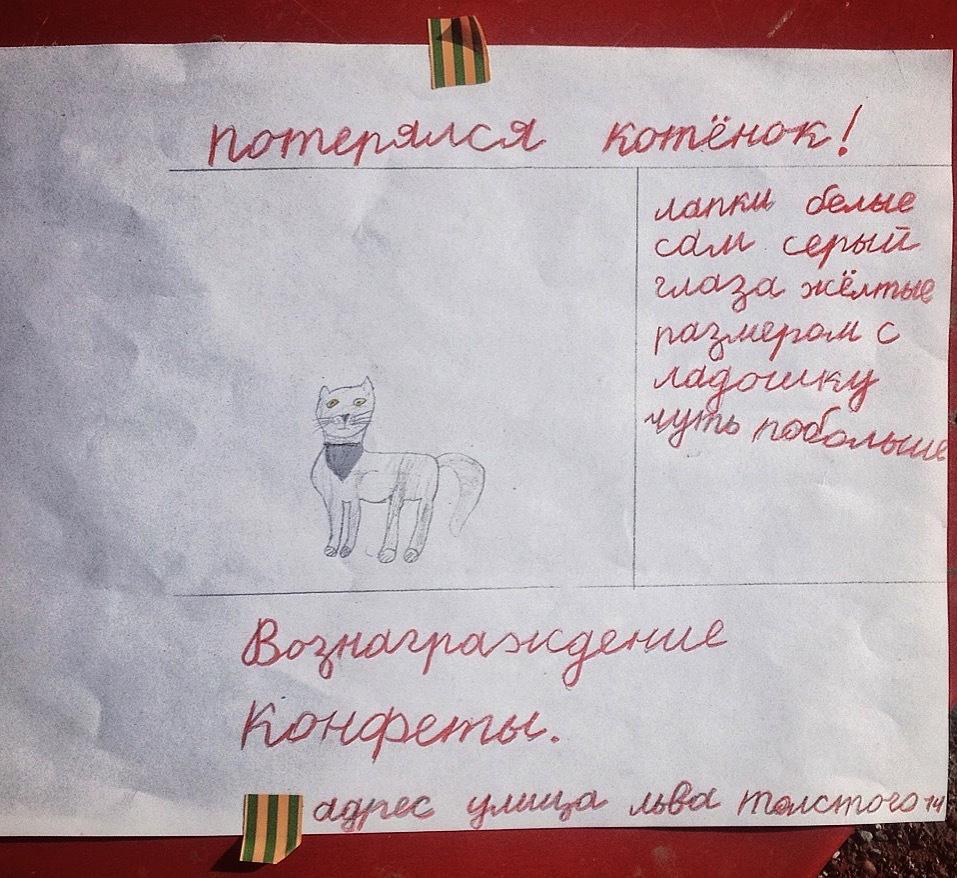 Носовых создать объявление тамада частные объявления москва