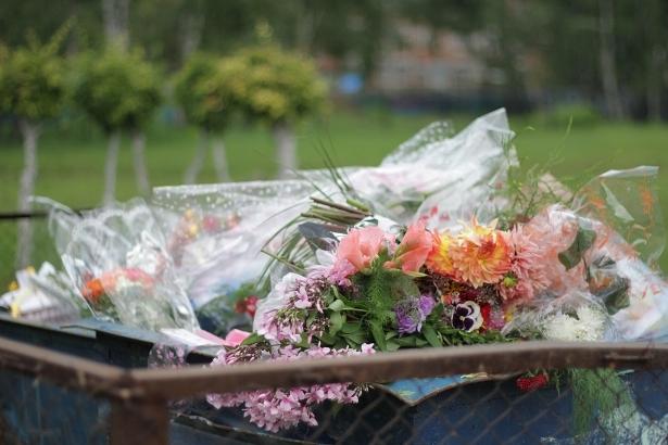 Закупка цветов для магазина в минске, цветы казань отзывы