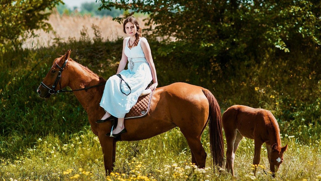 В прокате видео секс с конем