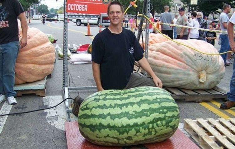 фото самый большой арбуз в мире