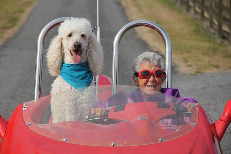 Бабушку загнул раком фото 445-150