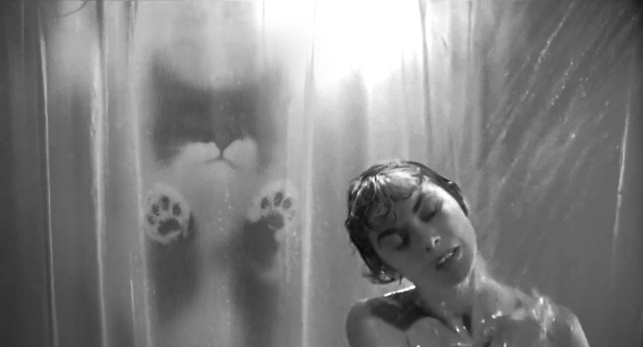 foto-v-dushe