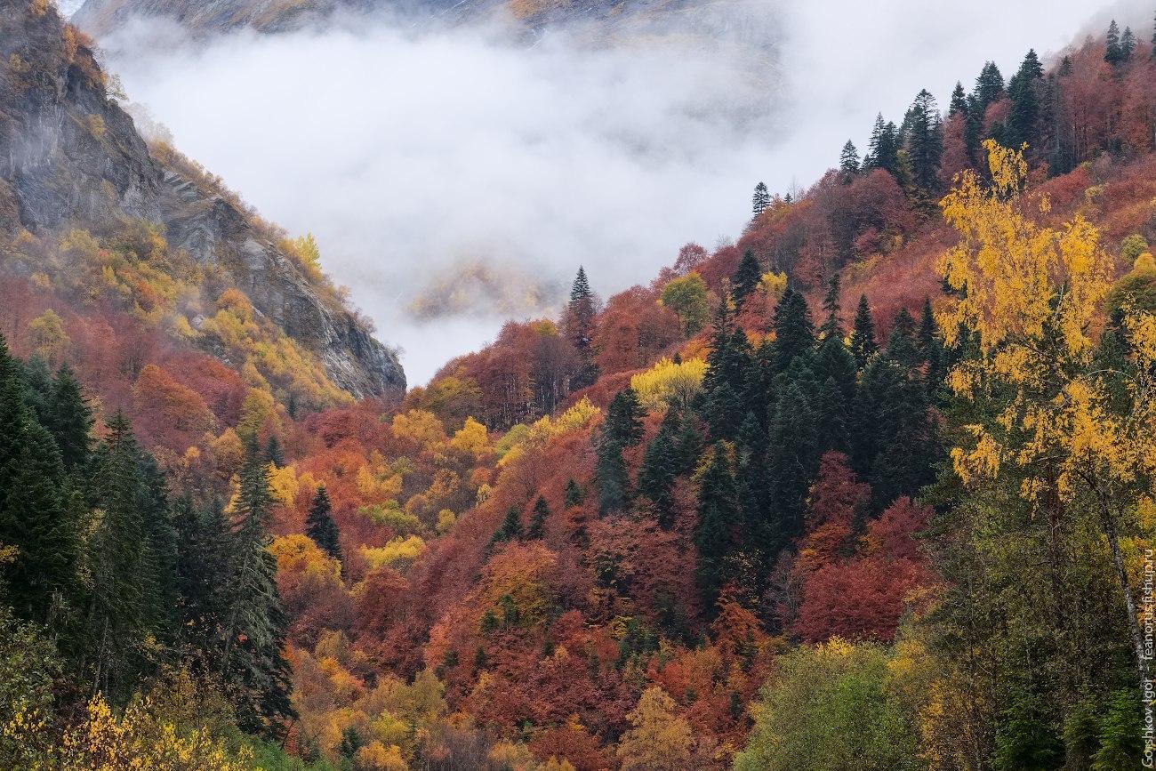 фото осень в горах золотая