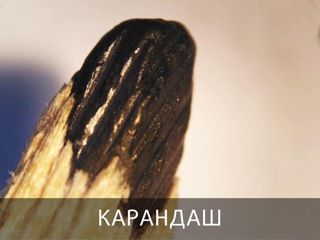 Клитор через микроскоп фото, рисуем член порно карандашом