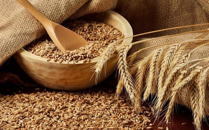 рецепт зерновой браги