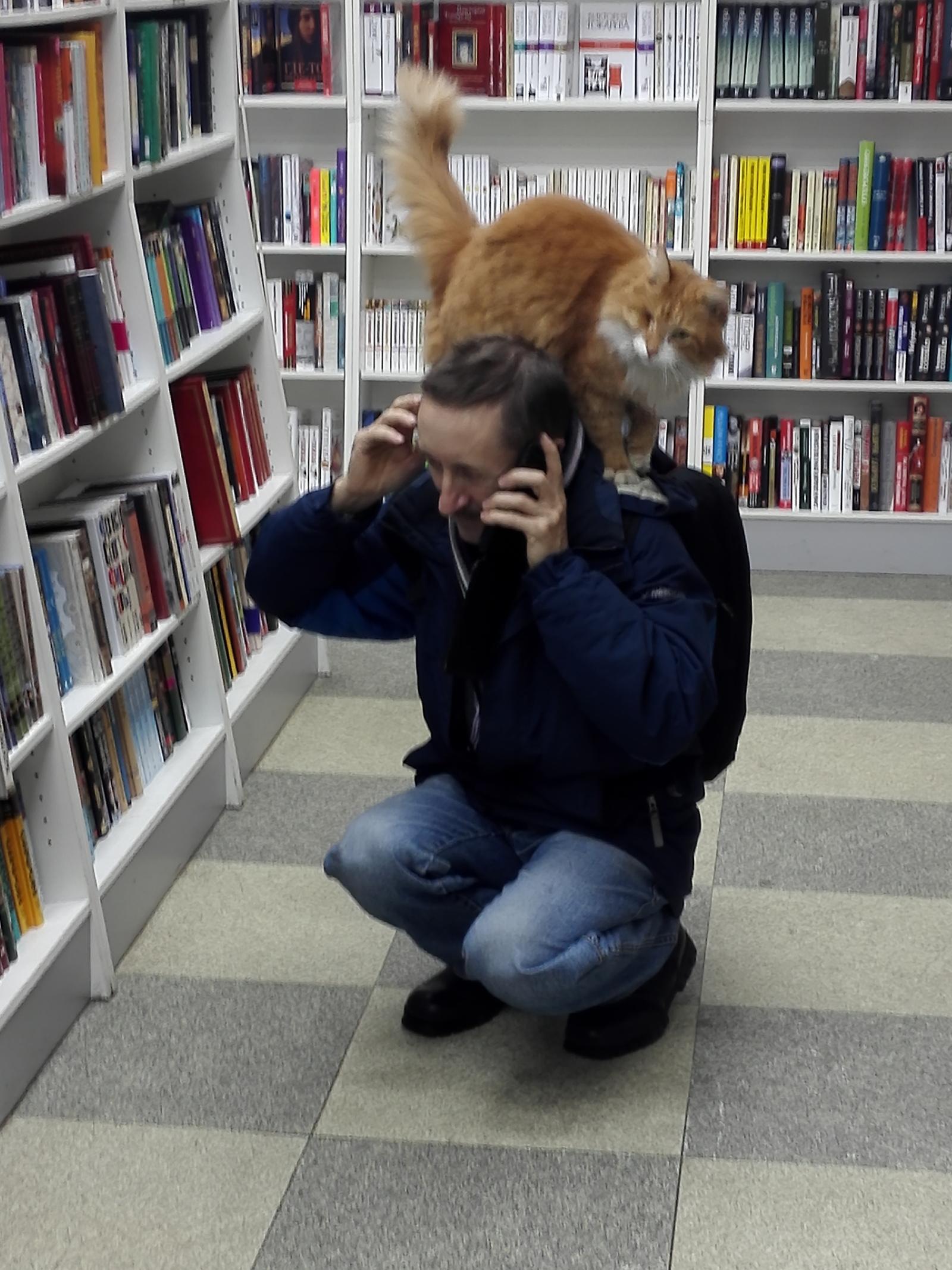 Библиотека ученого кота