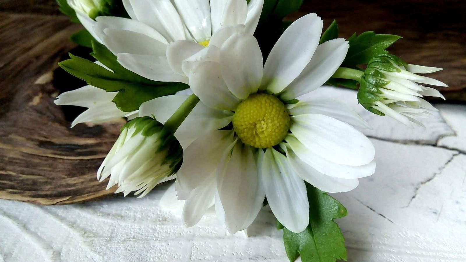 Рукоделие украшение цветы 12