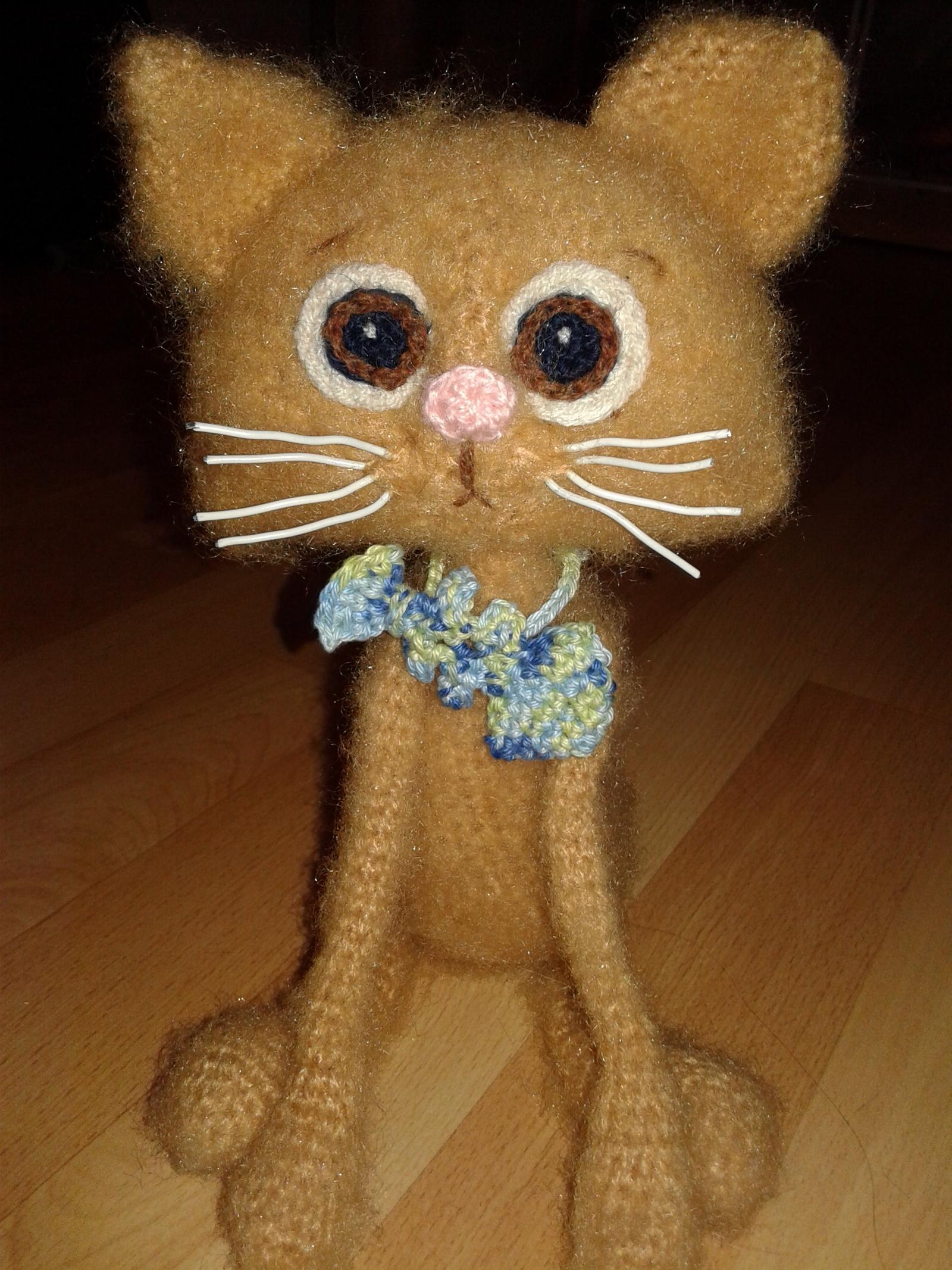 Фото кот тимофей