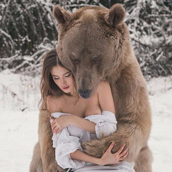 Девушка медведей порно фото 145-400