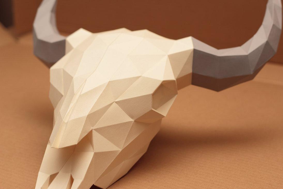 Схема черепа из бумаги