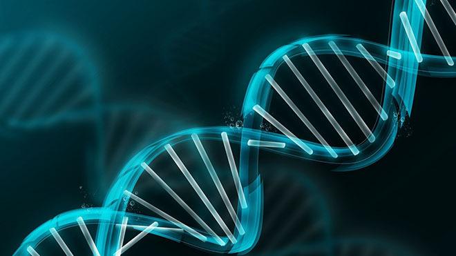 Картинки по запросу генетика