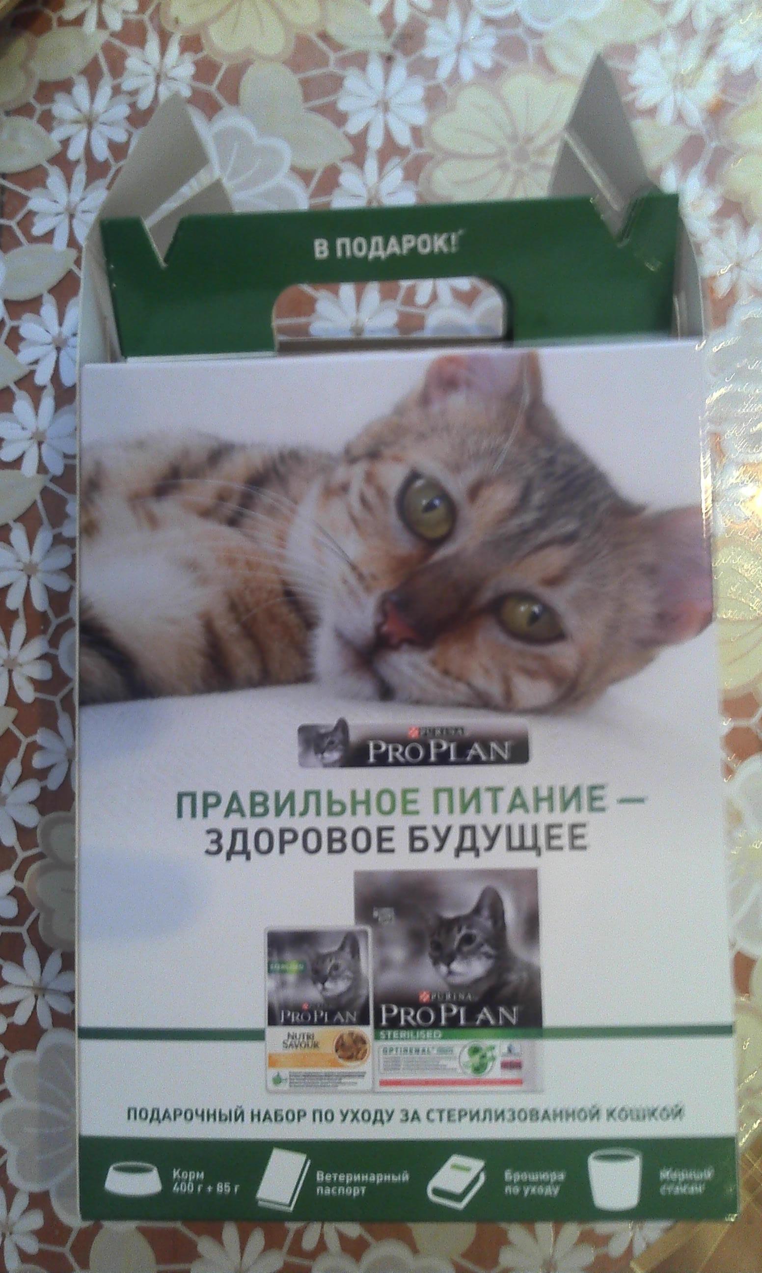 кошачий корм на халяву