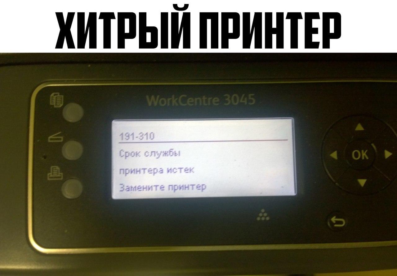 1492904980241449440.jpg
