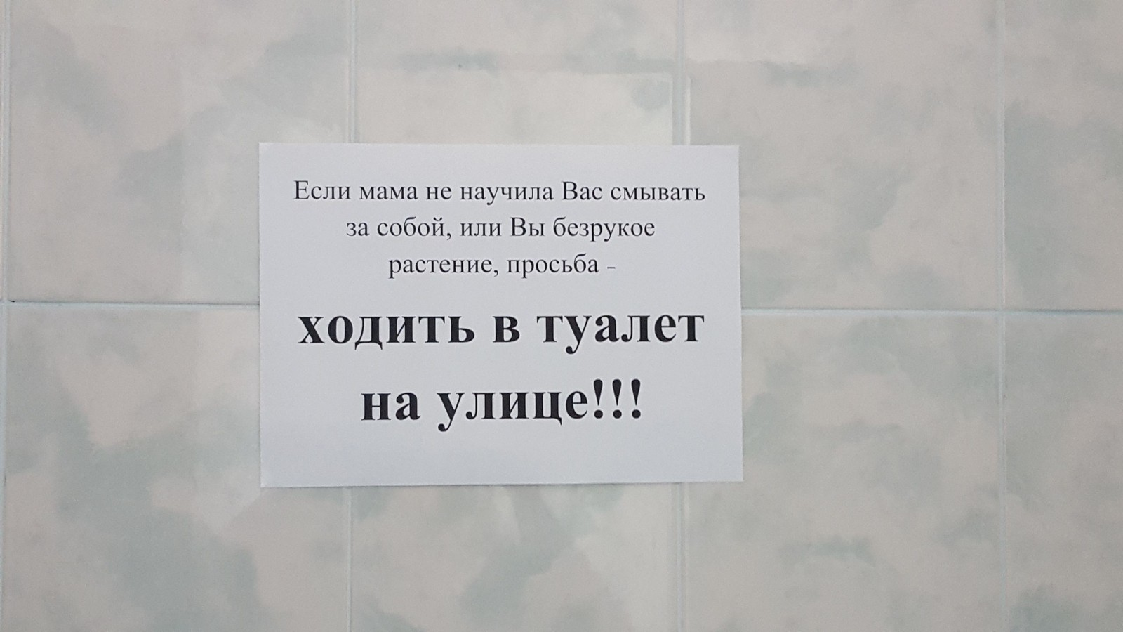 фото в туалете женском