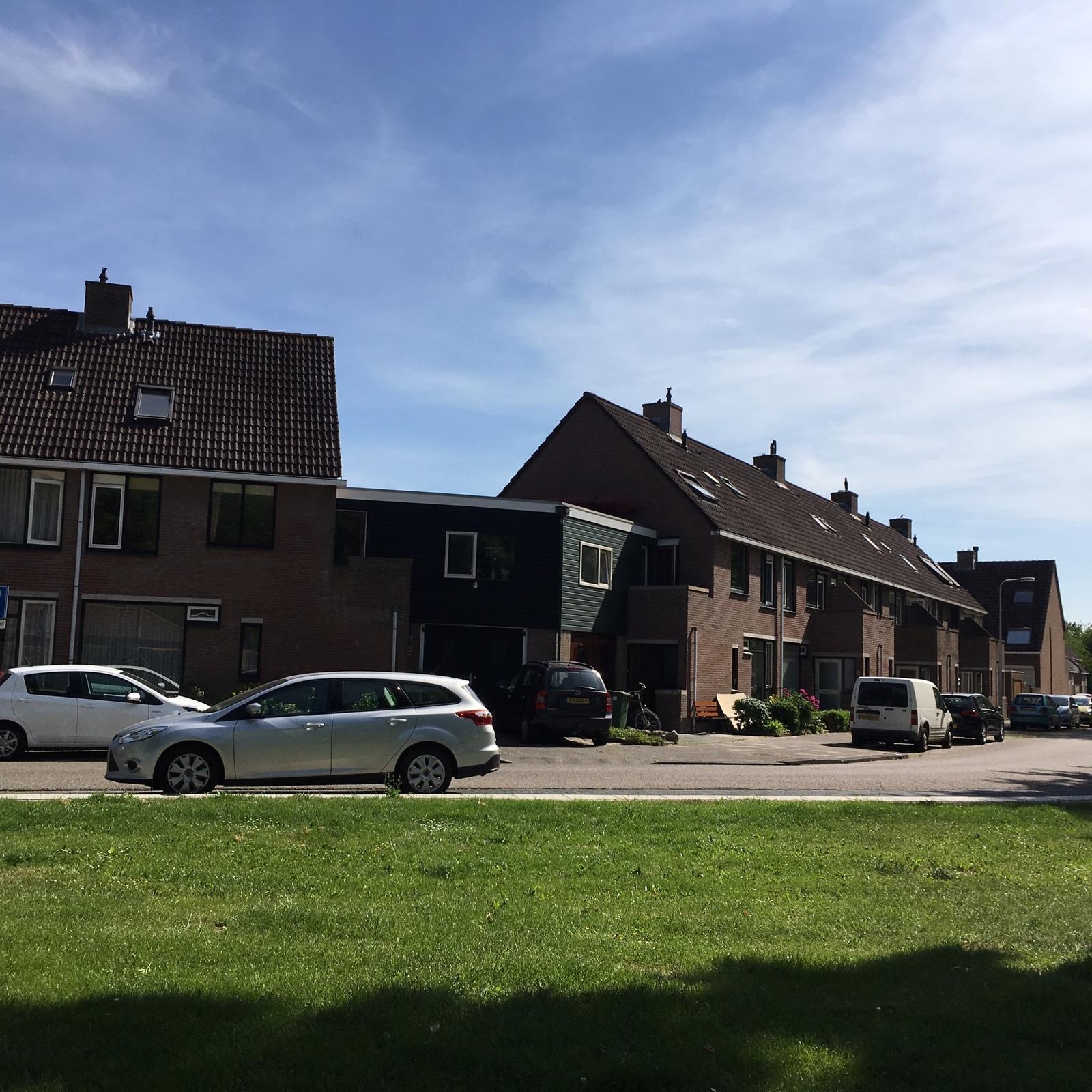 Беларусь — Голландия: смогут ли голландцы добыть важные три очка