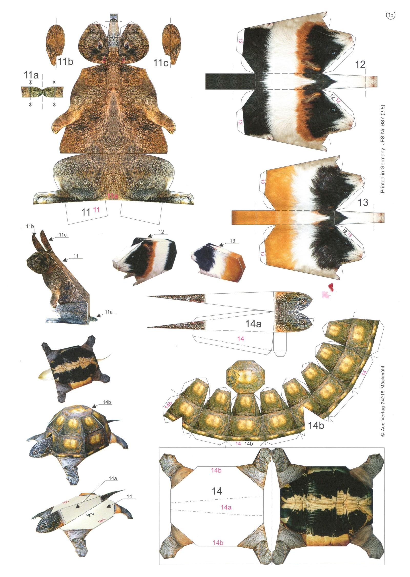 Животные и схемы 31