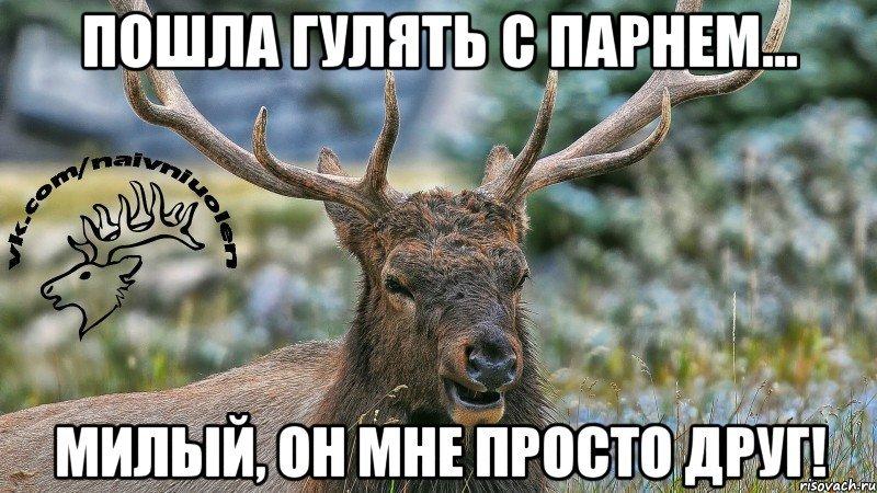 наивный олень фото