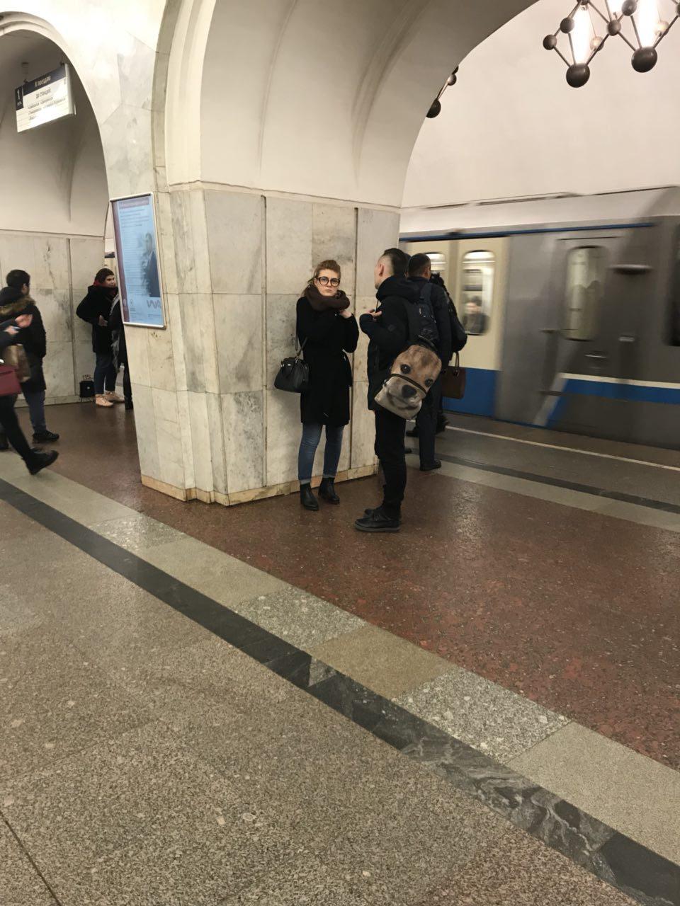 Шлюху на час Менделеевская линия vip проститутки в Санкт-Петербурге дешевые