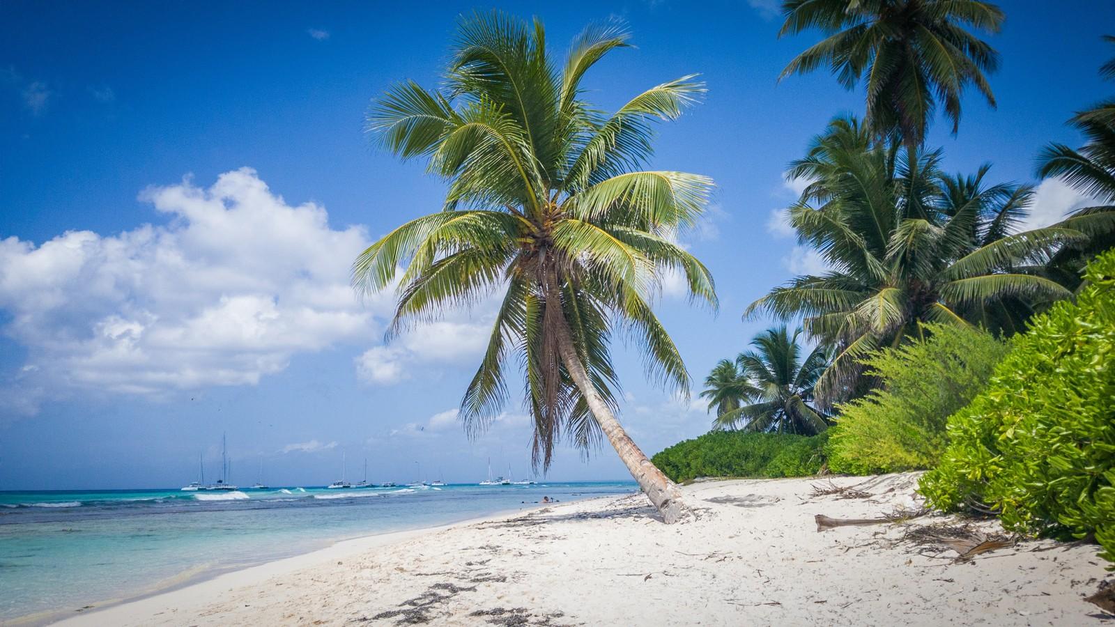Программа гражданства карибских стран