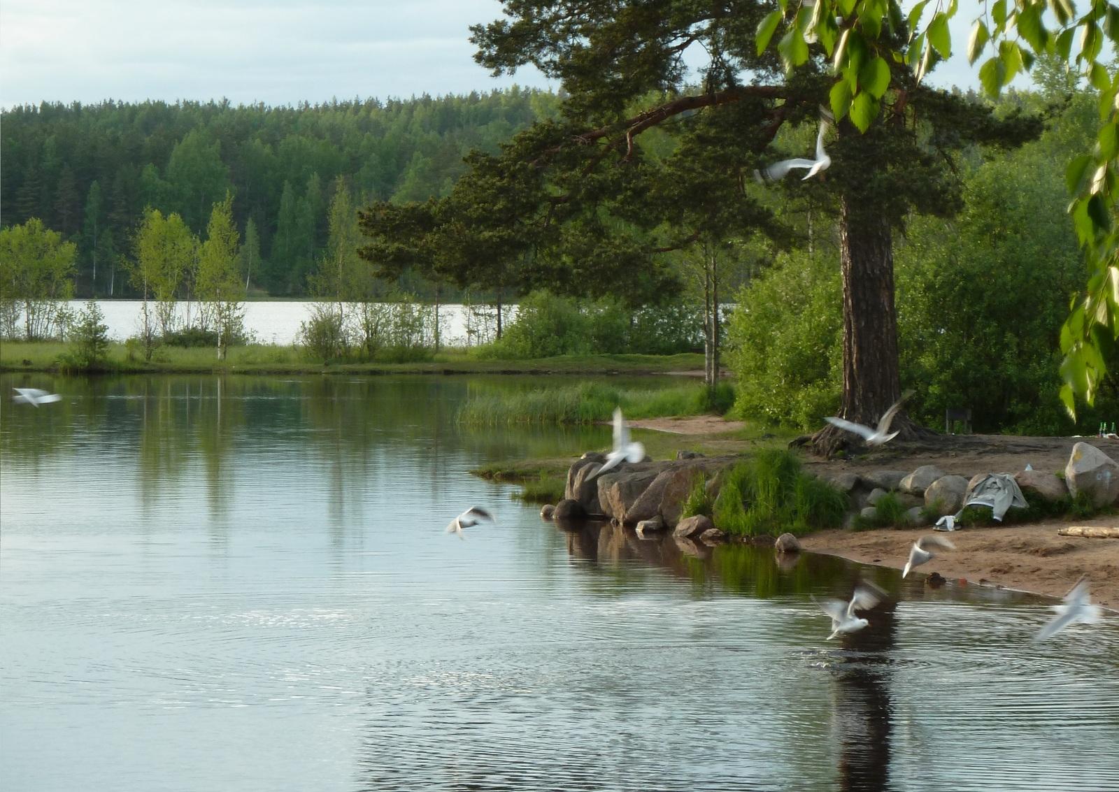 Делают камшот, разврат на озере